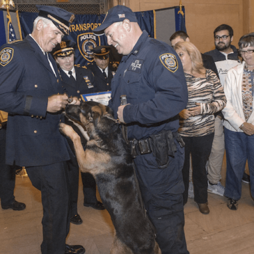 DOGGY SLAYCARE: COPS CLAIM K-9S TO BE KILLED IF POLICE REFORM PASSES